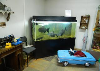 Вместо игровых советских автоматов аквариум