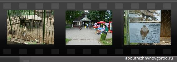 Превью к галерее фото зоопарка Швейцария